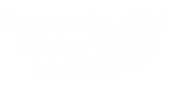 Transparante website